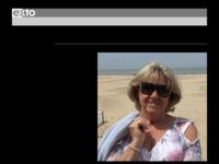 Dit is de site van Sonja Michiels, kunstschilder en bestuurslid Arte Falco