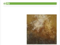 <p>Truus is een hele goede kennis van mij. Zij schildert meest abstract naar haar gevoel, maar kan ook heel mooi realistisch werken. Vooral zeegezichten. In haar abstracte werk gebruikt zij soms verweerde materie.</p>