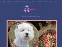 Een bron van inspiratie: mijn eigen West Highland White Terriers.