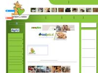 Belangrijke site voor hulp aan zwerfkatten