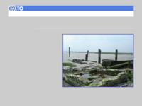Deze site heeft tot doel om bezoekers aan Zeeland op een makkelijke manier informatie te verschaffen over welke kunstenaars in welk gebied te vinden zijn. Ook worden 'lopende'exposities vermeld, is er een overzicht van Zeeuwse galeries en musea én staan er interessante links.