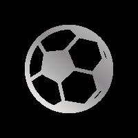 Pallone argento - Cinque goal in una giornata