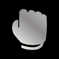Pugno argento - Fai 72 per 5 volte di fila