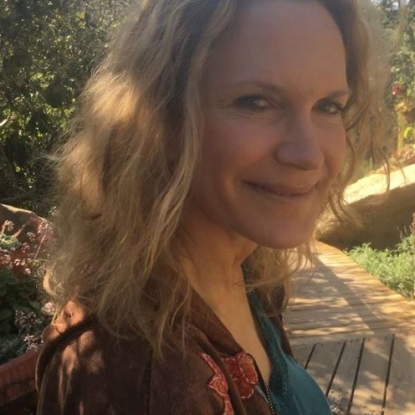 Orienting in the Dark: Dream Wisdom addressing our Collective Times