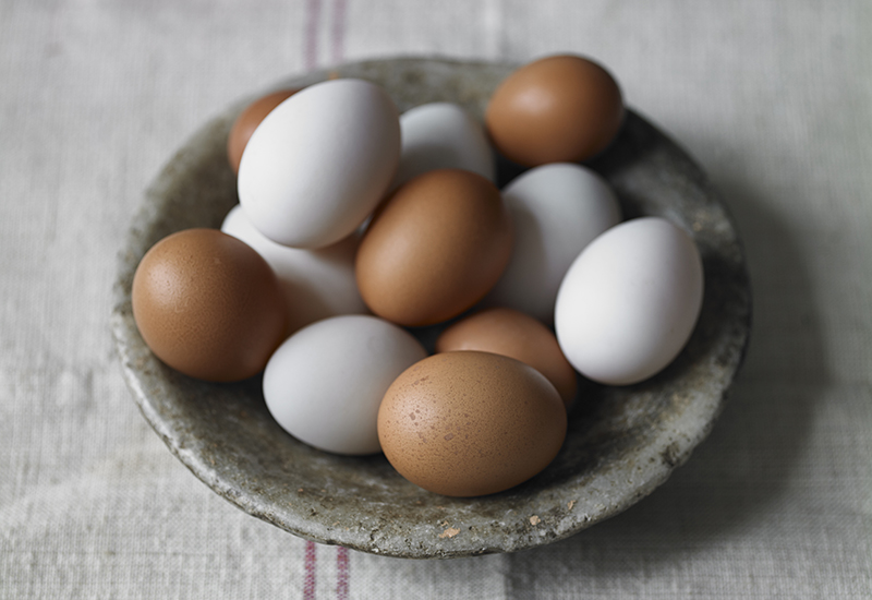 egg labels decoded