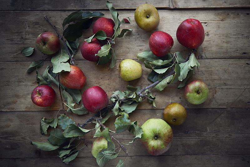 A sweet sample of British apple varieties