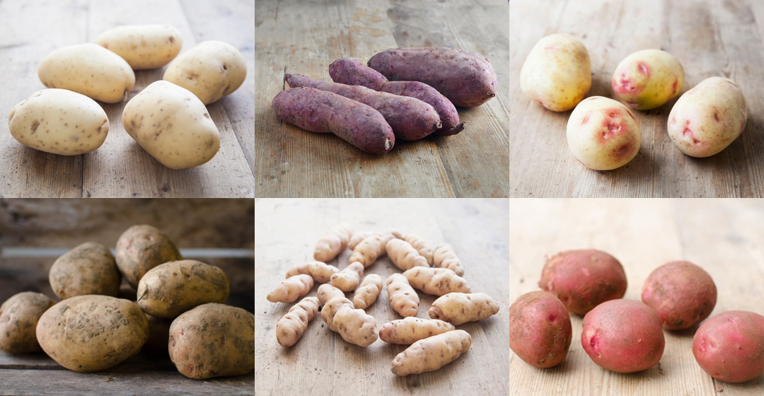 ultimate guide to potato varieties
