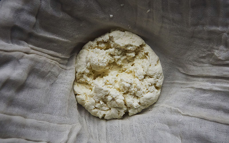 how to make paneer cheese at home