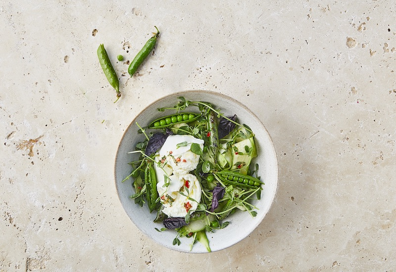 Mozzarella summer salad