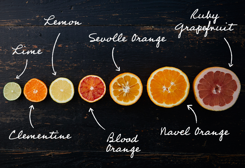 guide to citrus fruit