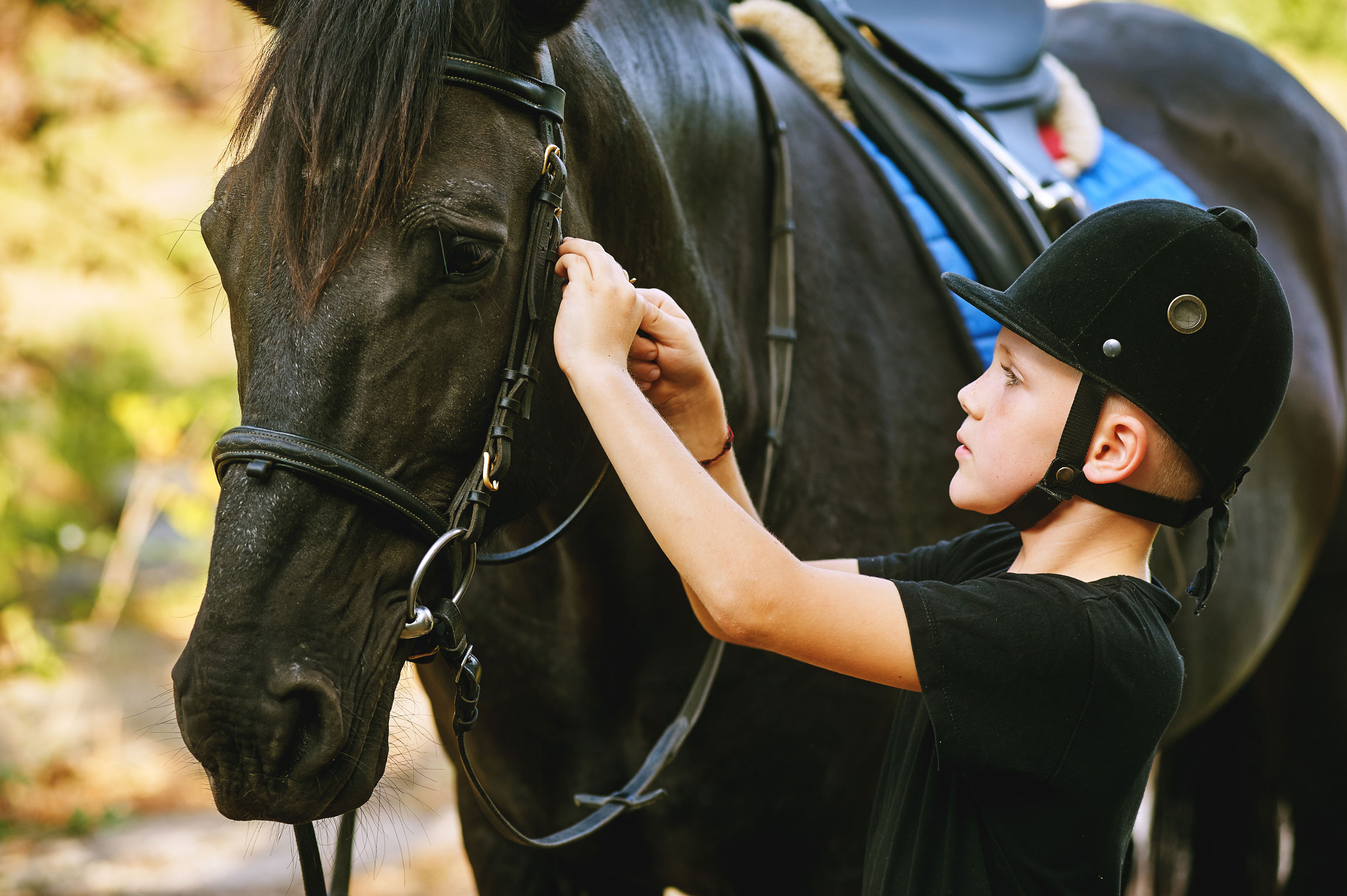 8 Rules For Keeping Your Child Safe Around Horses