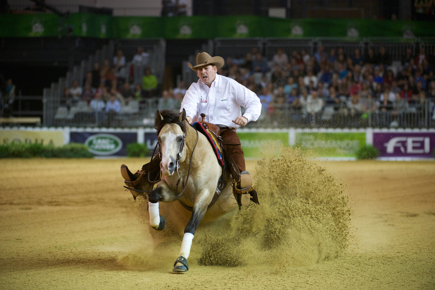 Reining At Weg What You Need To Know