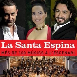 Barcelona-capital-Sardana-2014-Musical-Santa
