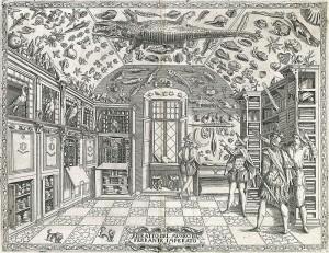 Gabinet de curiositats S XVI