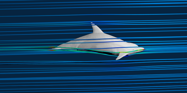 Dolphin Simulation