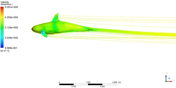 Simulating flow around a whale