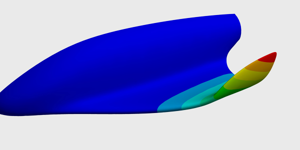 Fluid Structure Interaction (FSI) Simulation
