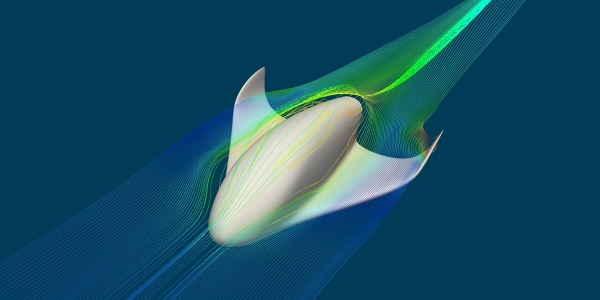 Spacecraft Aerodynamics LBM Simulation