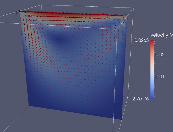 3D_lid-driven-cavity-midsection2-velocity.png