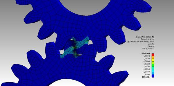 FEA-Gear-2D.jpg