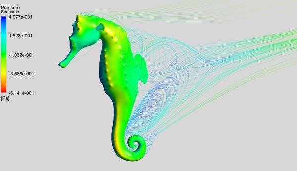 Flow-Simulation-Seahorse-Velocity-Streamlines-FetchCFD-Image.jpg