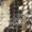 Guess High Heels aus echtem Leder in Snake-Optik Olivgrün - 1