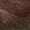 LACO'S Loafer mit Besatz aus echtem Fell Mittelbraun - 1
