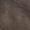 Diesel Gürtel aus echtem Leder Mittelgrau - 1