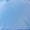 Blauer Usa Light-Daunenjacke mit Stehkragen Rauchblau - 1