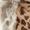 Barts Loop-Schal aus Webpelz Haselnuss Braun - 1