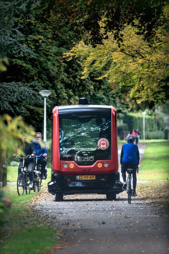 sparidaens-bus-14