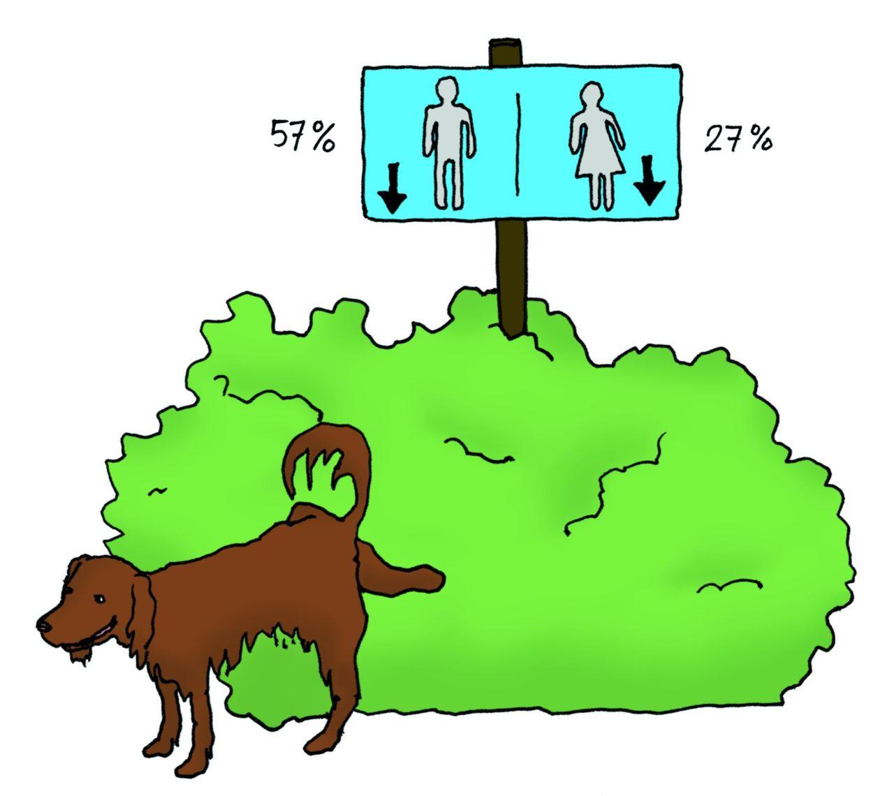 Hondje tilt zijn poot op om tegen een bosje te plassen
