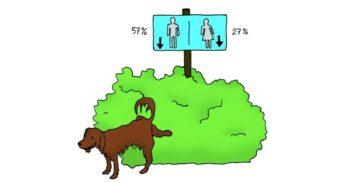 Hondje plast tegen bosje