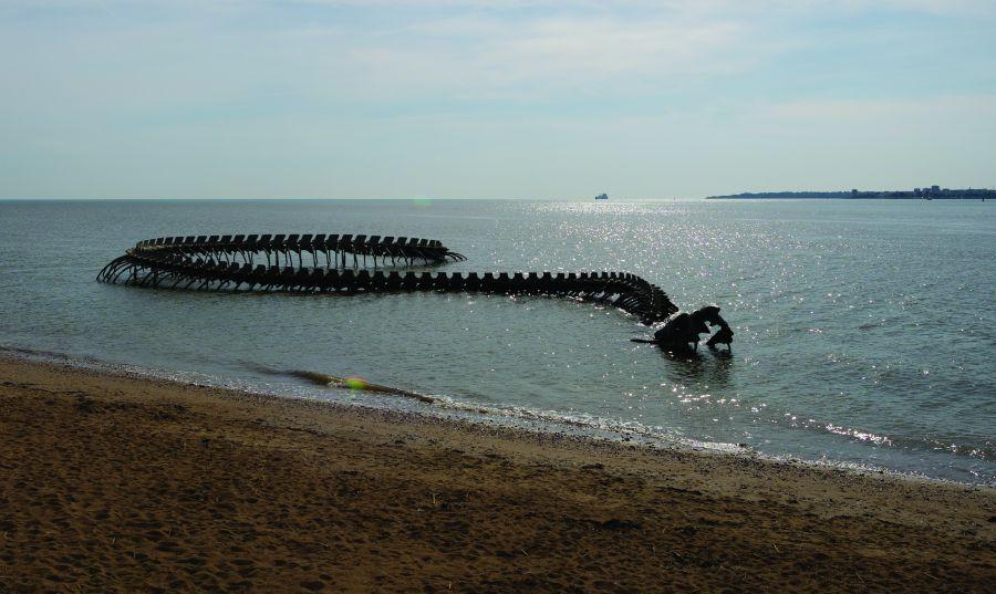 Glimmende (kunst)zeeslang bij Nantes