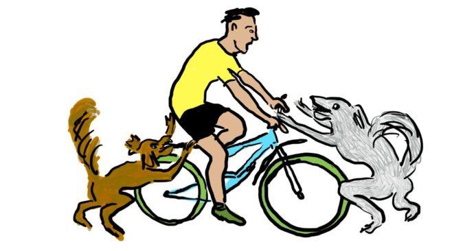Honden vallen fietser aan