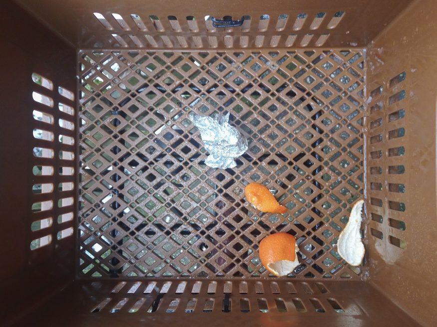Mandarijnenschillen-en-aluminiumfolie-25-januari-2019