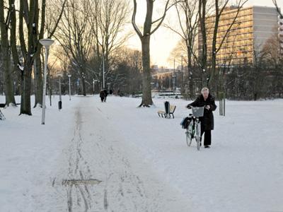 sjokken door de sneeuw