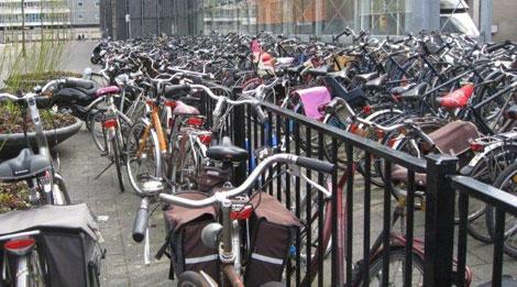 Volle fietsstallingen op Station Alexander