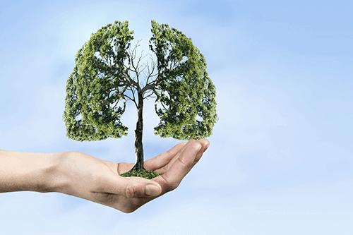 Évaluation du risque de récidive après une embolie pulmonaire