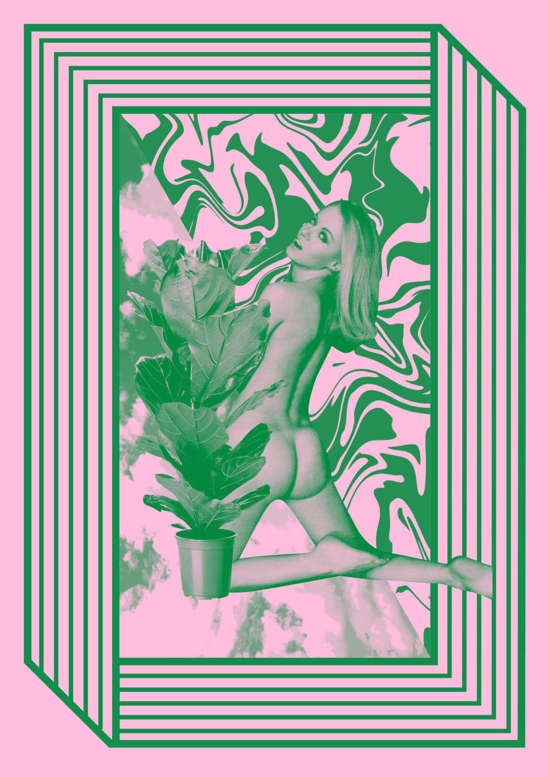 Chrissieabbott  Aparallelvision  Exhibition Foliage