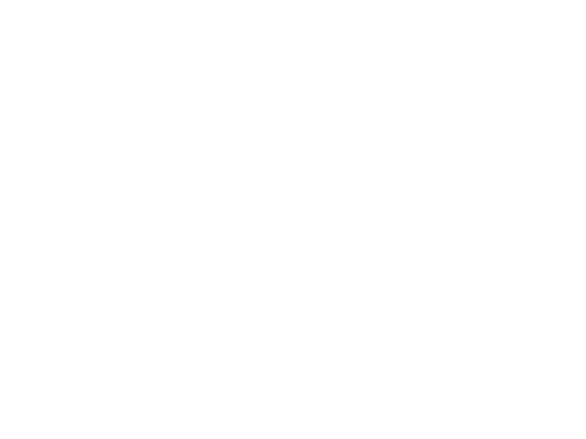 Blink Industries