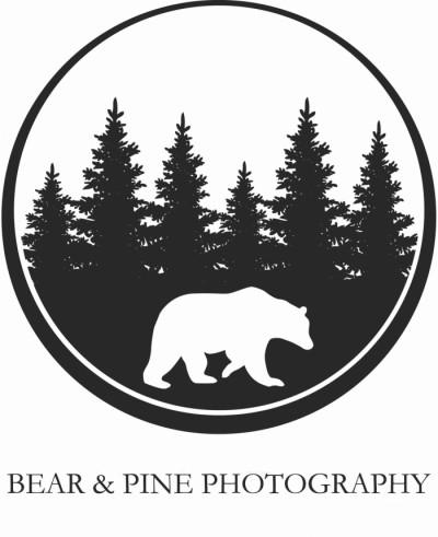 Bear and Pine