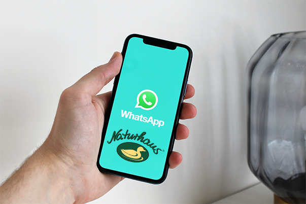 Whats App Channel