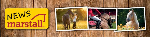 Regelmäßig Informationen über Pferdefutter-Aktionen und Fütterung per E-Mail erhalten.