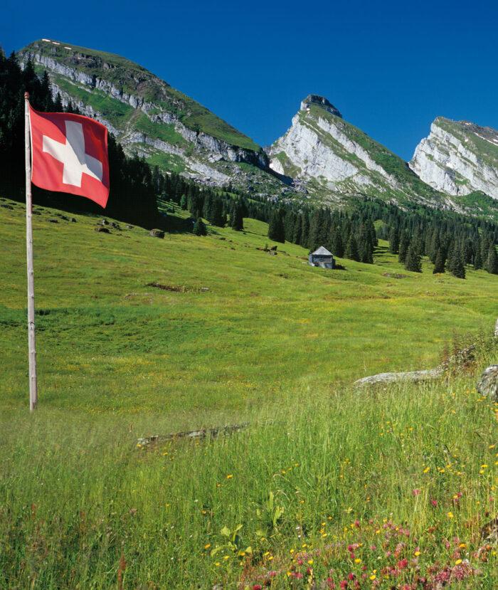 Geschichte 2010 Zurück In Schweizer Händen