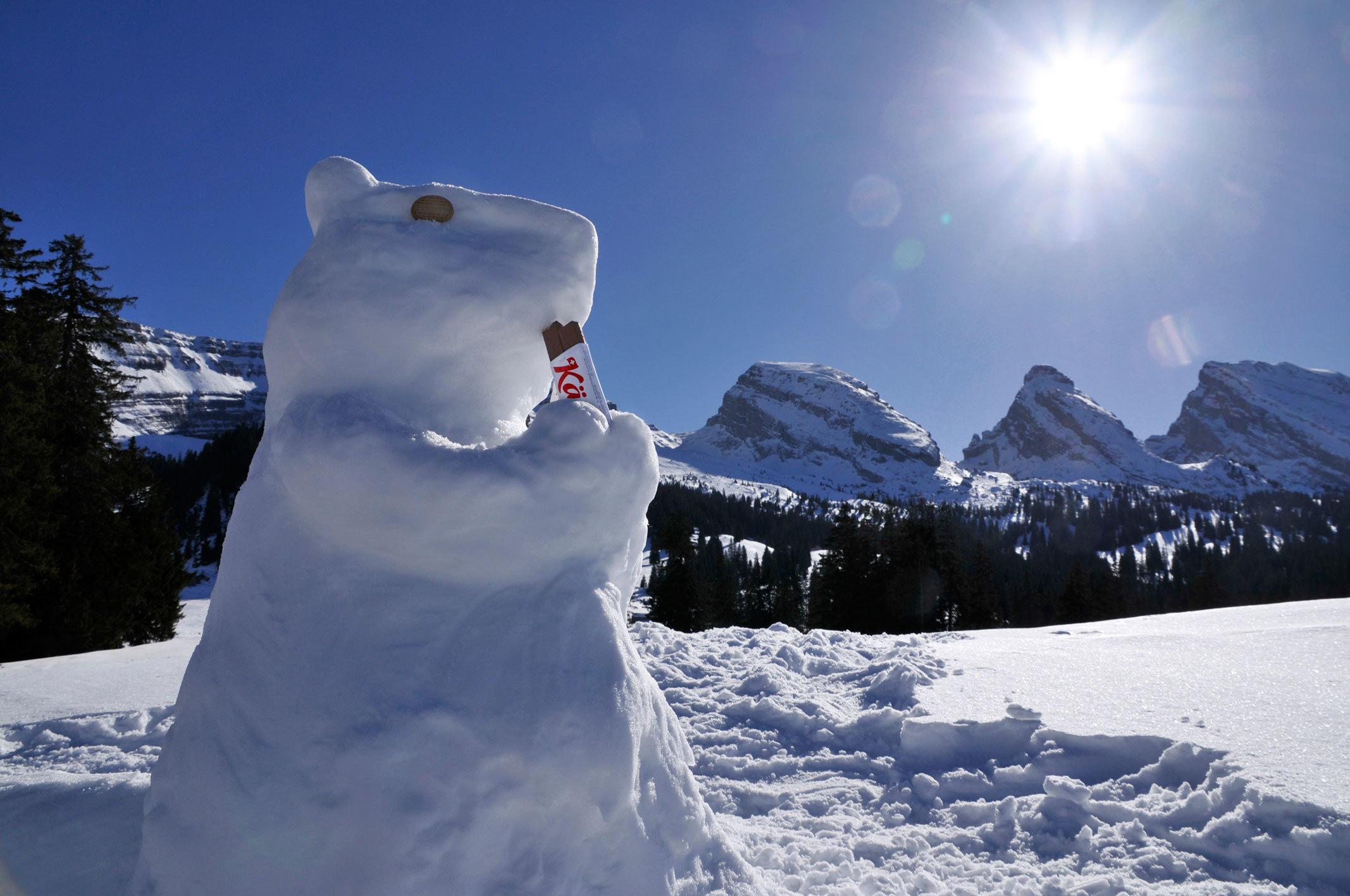 Kägi Schneemurmeltier im Toggenburg vor den Churfirsten