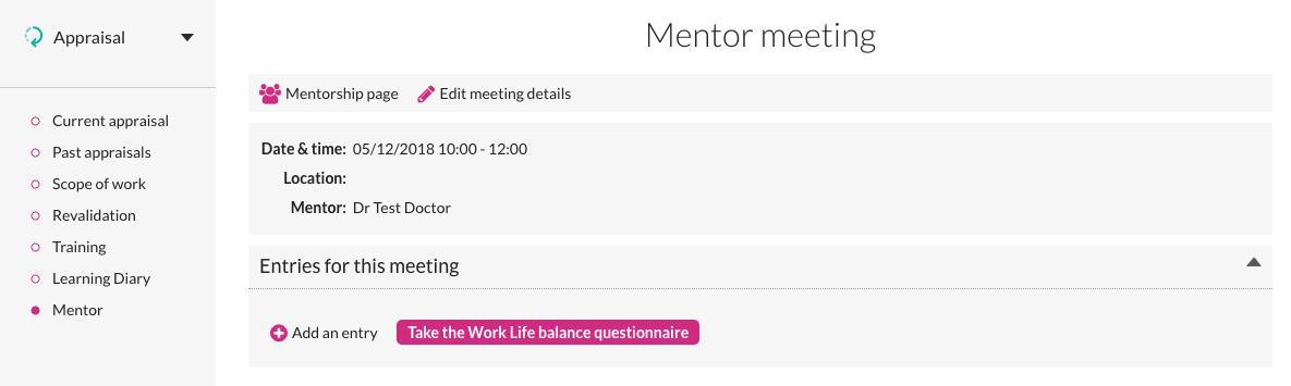 Mentor meeting