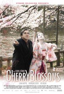 Cherry Blossoms / Kirschblüten - Hanami