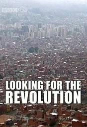 Looking for the Revolution