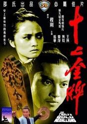 The Twelve Gold Medallions / Shi er jin pai